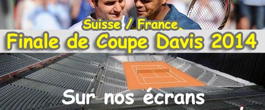 Finale Coupe Davis 2014