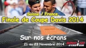 Finale_Coupe_Davis_2014
